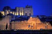 France, Provence, Avignon, skyline, general view.
