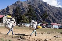 Porters. Himalayas. Nepal.