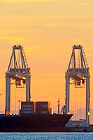 Container cranes atsunset, Deltaport container terminal, Roberts Bank, British Columbia.