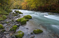 Mountain stream, Le Dranse, during autumn in the French Alps.