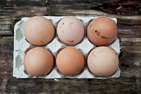 Farm eggs in carton.