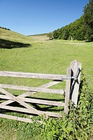 Gate leading into the Susex Downs, Sussex, England.
