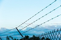 Barbed wire on top of a fence in Texas.