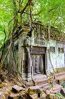 Prasat Beng Mealea temple ruins, Siem Reap Province, Cambodia.