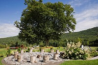 Tree stumps next to fire pit and Persicaria polymorpha - Giant Fleece flowers with Betula alleghaniensis - Birch tree in the background in private bac...