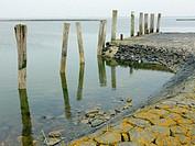 Landscape on Hallig Langeneß with coastal protection and walk, Wadden Sea, North Sea, Schleswig-Holstein, Germany, Europe.
