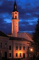 Hungary, Veszprém, Firewatch Tower,.
