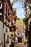 Old picturesque village Riquewihr, village of wine, member of most beautiful villages of France, eastern France, border to Germany, commune of departm...