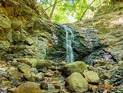 Uvas Canyon County Park is natural park is located in upper Uvas Canyon on the eastern side of the Santa Cruz Mountains, west of Morgan Hill, Californ...