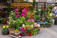 Flower shop, Nantes, Loire Atlantique, France