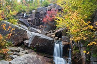 Zealand Falls on Whitewall Brook in Bethlehem, New Hampshire USA on an autumn day. This waterfall is located near Zealand Falls Hut.