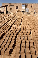 Mud bricks layed out in the sun to dry at home construction site near Shymkent Kazakhstan.