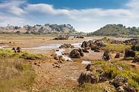 Natural Park of Marismas de Santoña near Santoña village, Cantabria, Spain.