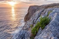 Coast near Naves, Asturias, Spain.