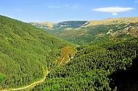 Barranco del Chate (El Chate Ravine). Fanlo, Aragonese Pyrenees, Huesca province, Spain