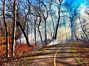 Salt Creek Bicycle Path, western suburbs of Chicago during a prescribed burn. Burning is done to control invasive plants in the native savanna.