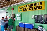 Florida, Upper Florida Keys, Key Largo, Key Largo Fisheries Backyard, restaurant, seafood market, waterfront, order window, man, customer,
