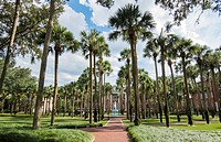 Deland Florida Stetson University fountain and Palm Court with palm trees peaceful in small town education,.