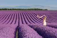 Blonde woman with scarf in a lavender field. Plateau de Valensole, Alpes-de-Haute-Provence, Provence-Alpes-Côte d'Azur, France, Europe.