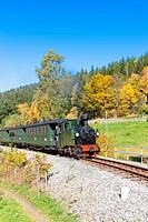 steam train, Steinbach - Johstadt, Germany.