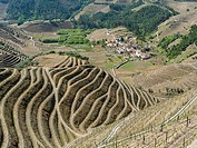 Vineyards and a small village near Assento. The valley of river Douro. It is the wine growing area Alto Douro and listed as UNESCO World heritage. Eur...
