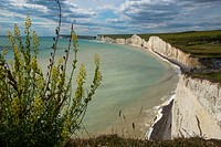 cliff coast at Beachy Head, Sussex, England