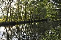 Eure River, Eure-et-Loir department, Centre-Val de Loire region, France, Europe.