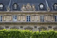 French architecture above a hedge row in the Marais district, Paris, Ile-de-France, France.