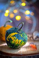 Autumn decoration with small pumpkins and lights.
