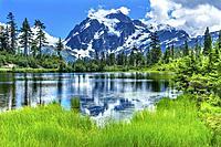 Picture Lake Evergreens Mount Shuksan Mount Baker Highway Snow Mountain Trees Washington Pacific Northwest USA..