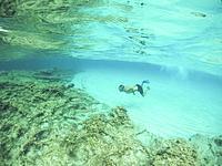 Young man snorkeling in Formentera island Balearics Spain.