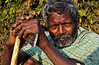 Hindu man from a low caste ( i. e. scheduled caste ( SC)) ( Niyamgiri hills, Odisha state, India). He is going to the forest to cut firewood. He is li...