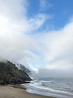 Heceta Head Oregon. USA