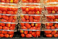 Cherry tomatoes for sale. Barcelona, Catalonia, Spain.