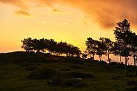 Beautiful landscape near the Ermita de Nuestra Señora de Las Nieves, Cantabria, Spain