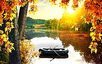 Boat in the pond in the autumn morning.