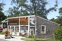 Wellfleet, Cape Cod, Massachusetts, United States.