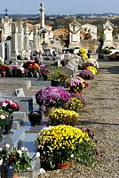 Flowers put out in a village cemetery for the Toussaint Holiday- Nov. 1. , Pézenas, France.