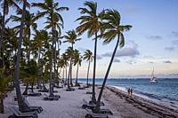 Bavaro Beach, Punta Cana, Dominican Republic.