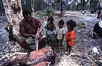 Aborigine Badi people, salt water tribe realizing the Irrigol (boomerang) on boni tree, specific tree for the manufacture of the boomerang from the we...