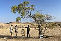 Lemonade Stand at Huab Under Canvas, Damaraland, Namibia, Africa.