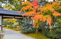 Japan , Kyoto City, Imperial Palace Gardens.