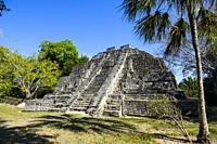 Chacchoben Myan ruins early city at the Cruise destination Costa Maya Mexico in Central America is a popular stop on the Western Caribbean cruise ship...