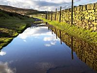 Reflections in rainwater puddles along the Bronte Way near Haworth West Yorkshire England.