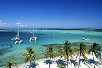 Jamesby islet, Tobago Cays, Grenadines islands, Saint Vincent and the Grenadines, Winward Islands, Lesser Antilles, Caribbean Sea.