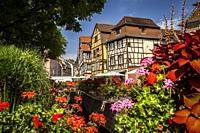 Ancienne Douane square in Colmar, Alsace (department of Haut-Rhin, region of Grand Est, France).