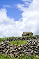 Portugal, Azores, Terceira Island, Serra do Cume, stone wall.