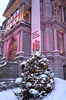 Canada, Quebec, Montreal, City Hall, Christmas tree,.
