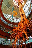 roots of tree, Cosmocaixa Museum of Science, Barcelona, Catalonia, Spain