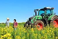couple of farmers in a canola field with a tractor.Porqueres, Girona, Catalonia, Spain